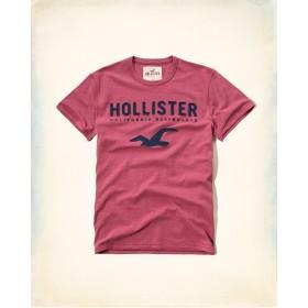 TSA081 - Áo thun nam Hollister hàng hiệu