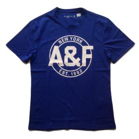 TSAA441 - Áo thun nam Abercrombie Fitch Blue Tee Graphic