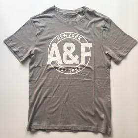 TSAA444 - Áo thun nam Abercrombie Fitch Gray WhiteTee Graphic