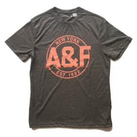 TSAA445 - Áo thun nam Abercrombie Fitch Dark Gray Tee Graphic